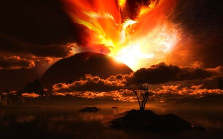 the-phoenix-rising