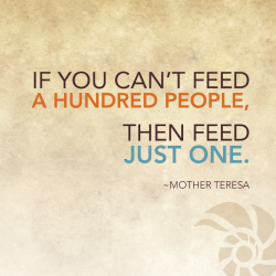 just-feed-one