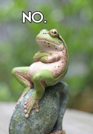 the-frog-prince.jpg