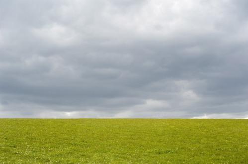 Empty green grassy field