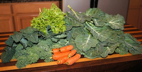 veggies-646107_960_720.jpg