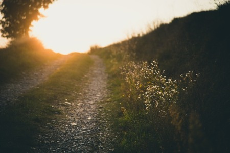 path-691233_960_720