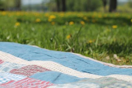 picnic-1112398_960_720